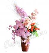 Vũ điệu của hoa