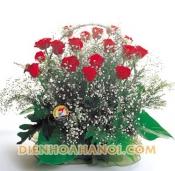 Hoa tình yêu HTY73