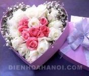 Hoa tình yêu HTY61