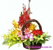 Hoa để bàn 15