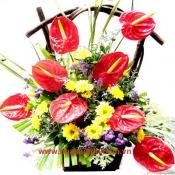Hoa để bàn 09