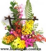 Hoa để bàn 10